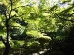 1103_garden01