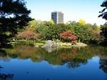 091115_koishigawa01