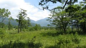 Nikko_20110815_27