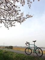 2013_spring_02