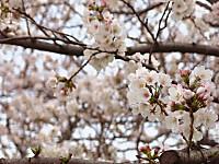 2013_spring_05